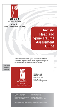 Download the Head And Spine Trauma Field Guide